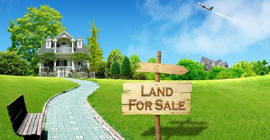 Kinh nghiệm chọn mua nhà bất động sản