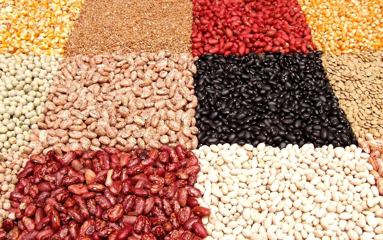 Một số loại đậu của tốt cho việc giảm cân
